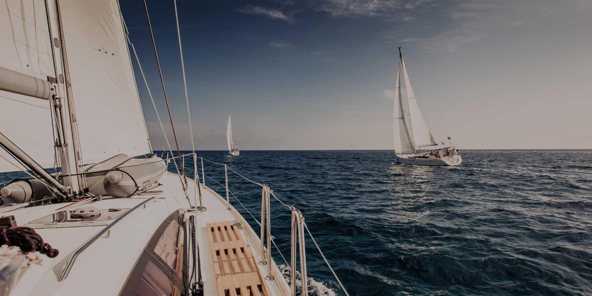 jachthaven de punt